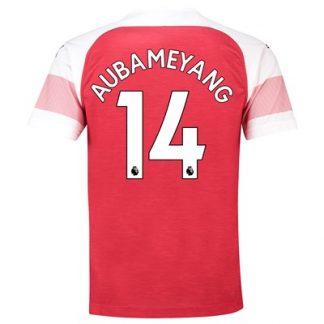 Arsenal Home Shirt 2018-19 - Outsize with Aubameyang 14 printing